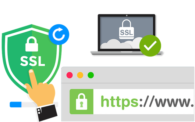 Let WLD Cover the Costs of SSL Certificates and Website Hosting