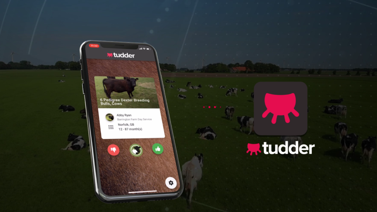 'Tinder For Cows' Creator Talks Brand Awareness Campaign
