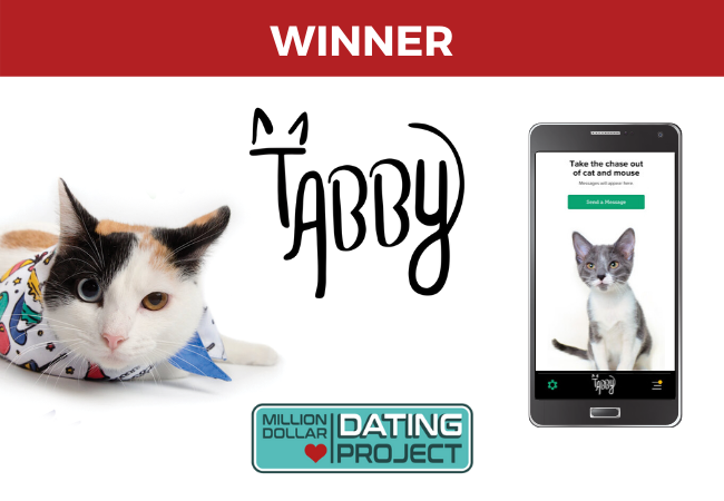 Tabby – Dating App for Cat Lovers and Owners!