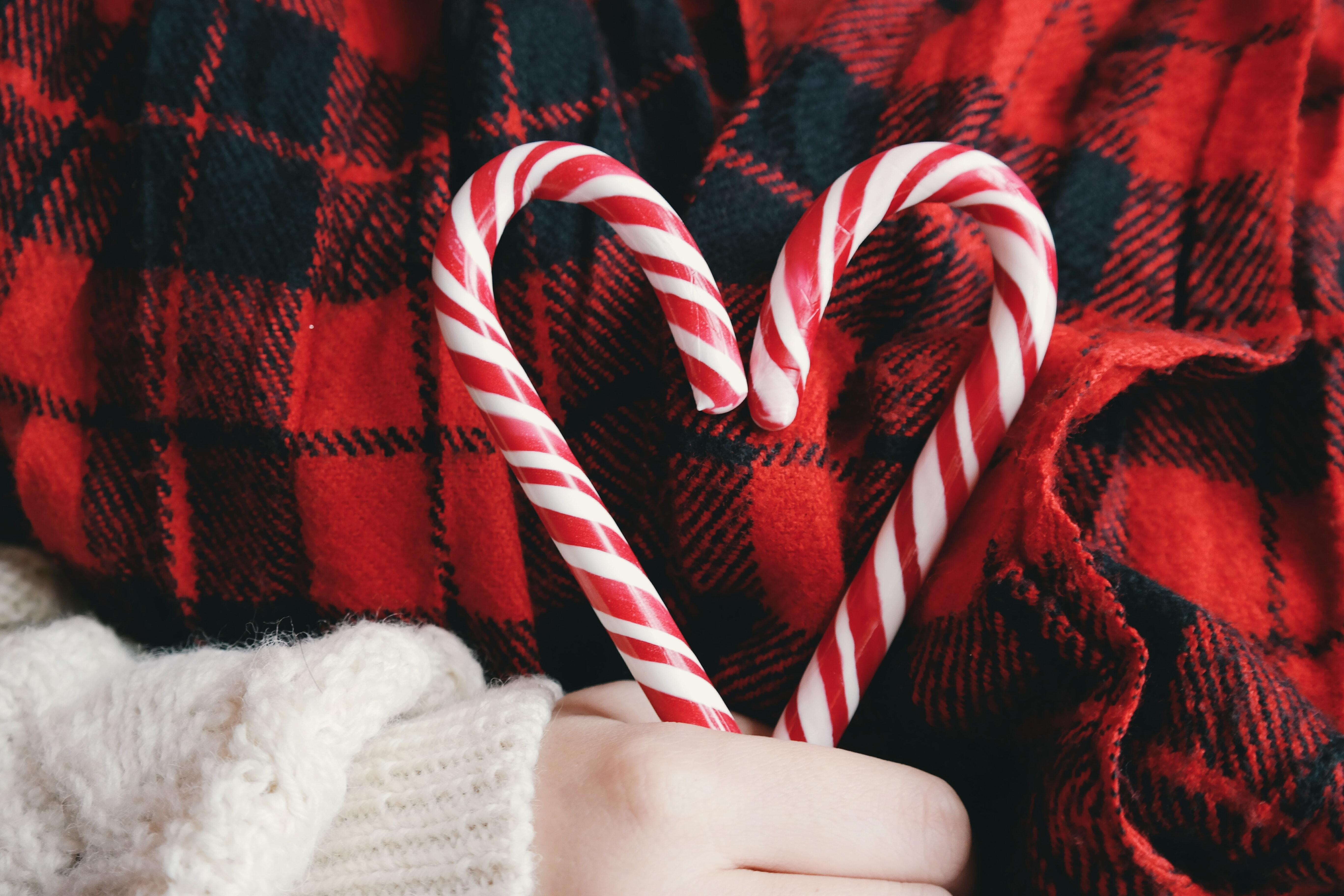 Pick Your Perfect Holiday Partner with our Festive Dating Checklist