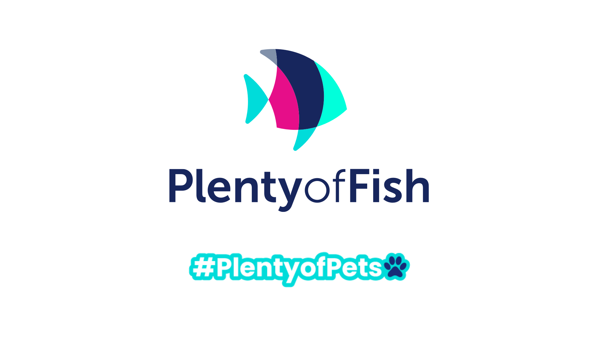 'Plenty Of Pets' Livestreaming Campaign to Connect Singles Over Love of Animals